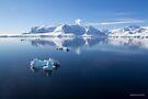 Reflecting on Antarctica 066 by Karl David Hill