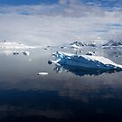 Reflecting on Antarctica 069 by Karl David Hill