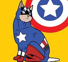 Capt. Americat by MldirtySocks