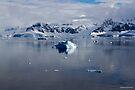 Reflecting on Antarctica 070 by Karl David Hill