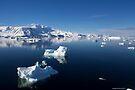 Reflecting on Antarctica 071 by Karl David Hill