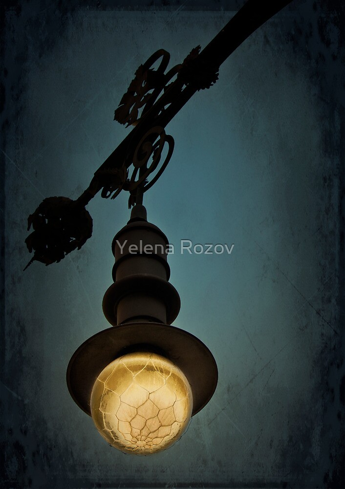 Light Up the Night by Yelena Rozov