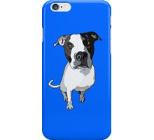 Officer Murphy is Blue iPhone Case/Skin