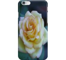 Yellow Rose iPhone Case iPhone Case/Skin