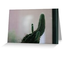 Little Cactus Greeting Card