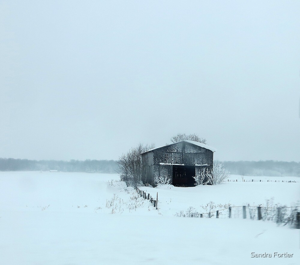 Blue Christmas by Sandra Fortier
