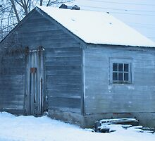 Tool shed in Blue by Liesl Gaesser