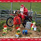 Santa in Australia - Summer Day by Bev Pascoe