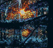 """Twilight in a Dark Forest by David """"Oz""""  Osterczy"""