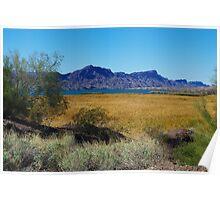 Lake Havasu, Arizona Poster