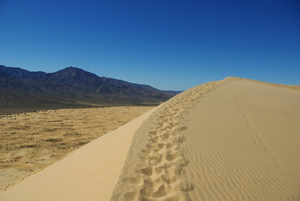 Mojave Dune, California by Claudio Del Luongo