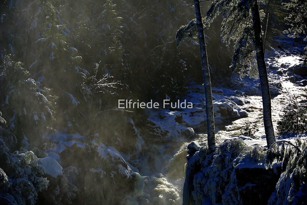 Snow ! by Elfriede Fulda