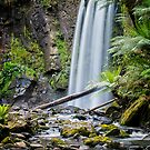 Hopetoun Falls by photograham