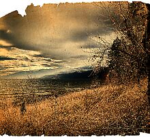 Okanagan Lake  by tobiundsimmi
