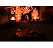 Melting Leaf Photographic Print