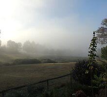 Reserve Fog by ScenerybyDesign