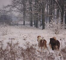 Happy Hollidays by liesbeth