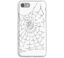 Cobweb iPhone Case/Skin