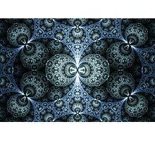 Microscopic Worlds Photographic Print