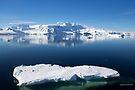 Reflecting on Antarctica 079 by Karl David Hill