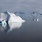 Reflecting on Antarctica 083 by Karl David Hill