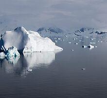 Reflecting on Antarctica 083 by Karl David Hill