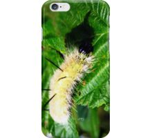 little white fluffy iPhone Case/Skin