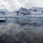 Reflecting on Antarctica 085 by Karl David Hill