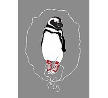 Happy Penguin in Converse Photographic Print