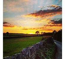 Devon Lanes Photographic Print