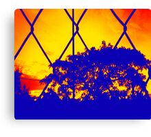 Wire Tree Afternoon Canvas Print
