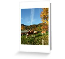 October Cows Greeting Card