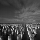 Princes pier by anla2011