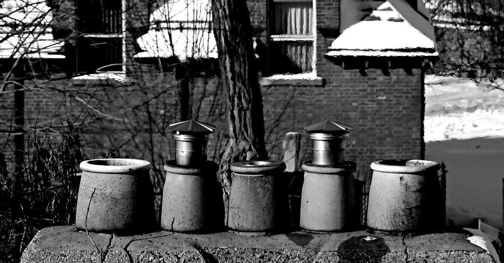 Winter heat by AndreCosto