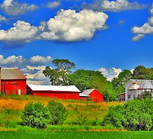 June In Wisconsin by EBArt