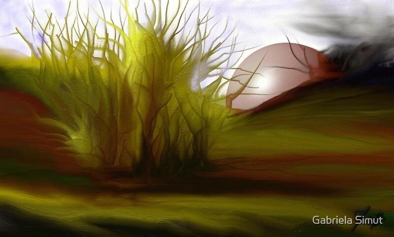 Autumn Sunset Artrage Digital Painting Software Canvas Prints By Gabriela Simut Redbubble