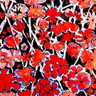 "Red Flower Etching No.2 by Belinda ""BillyLee"" NYE (Printmaker)"