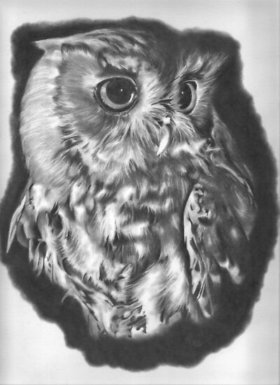 Owl 2 by Karen Townsend