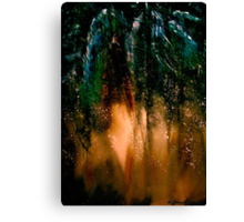 The Pines... Canvas Print