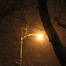 Blizzard Into The Night by Linda Miller Gesualdo