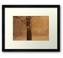 Lots Of Snow Framed Print