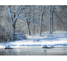 Come Sit With Me In The Snow Photographic Print