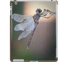 Battle Weary Warrior iPad Case/Skin