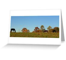 Back Forty Greeting Card