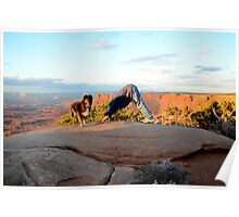Down Dog with Dog - Canyonlands, Utah Poster