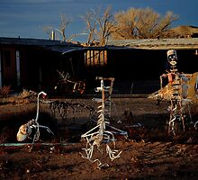 Roadside 'Art' - Hanksville, Utah by Michael Kannard