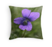 Wild Miniature Violet (Viola pratincola) - Untouched Throw Pillow