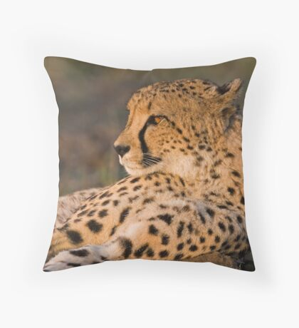 Rest And Watch Throw Pillow