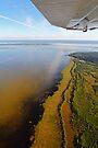 Northern glory by Explorations Africa Dan MacKenzie