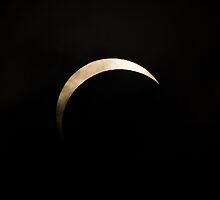 Crescent Sun by David Campbell